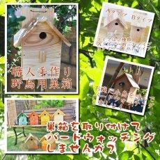 画像13: 【野鳥用巣箱:取り付け型】カラーバードハウスA (前扉タイプ)(完成品) お庭でバードウォッチング! (13)
