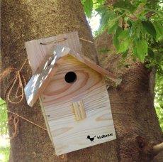 画像10: 【野鳥用巣箱:取り付け型】カラーバードハウスA (前扉タイプ)(完成品) お庭でバードウォッチング! (10)