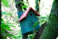 画像13: 【野鳥用巣箱:取り付け型】2色カラフルバードハウスA (前扉タイプ)(完成品) お庭でバードウォッチング! (13)