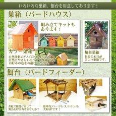 画像16: 【野鳥用巣箱:取り付け型】カラーバードハウスA (前扉タイプ)(完成品) お庭でバードウォッチング! (16)