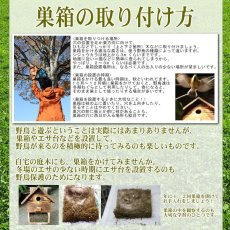 画像15: 【野鳥用巣箱:取り付け型】カラーバードハウスA (前扉タイプ)(完成品) お庭でバードウォッチング! (15)