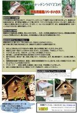 画像17: 【野鳥用巣箱:取り付け型】カラーバードハウスA (前扉タイプ)(完成品) お庭でバードウォッチング! (17)