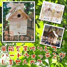 画像8: 【野鳥用巣箱 組み立てキット】バードハウスB (上ふたタイプ) 巣箱組み立てキット 夏休み工作、PTA活動、親子工作教室などに最適! (8)