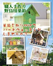 画像7: 【野鳥用巣箱】バードハウスB(上ふたタイプ)巣箱(完成品 無塗装) (7)
