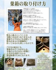 画像8: 【野鳥用巣箱】焼き杉 バードハウスB(上ふたタイプ)(縦型)巣箱(完成品) (8)