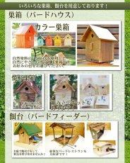 画像9: 【野鳥用巣箱】バードハウスB(上ふたタイプ)巣箱(完成品 無塗装) (9)