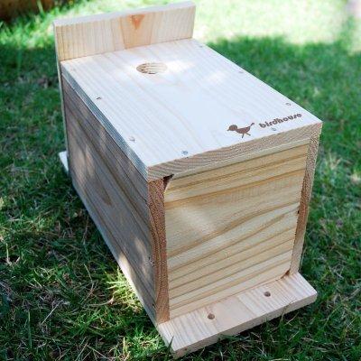 画像3: 【野鳥用巣箱】バードハウスB(上ふたタイプ)巣箱(完成品 無塗装)