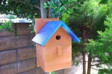 画像17: 【野鳥用巣箱:取り付け型】2色カラフルバードハウスA (前扉タイプ)(完成品) お庭でバードウォッチング! (17)