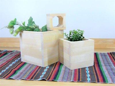 画像1: プラントキューブボックス (パイン材) [ZK420L] プランターカバー ガーデニング プランターカバー プランターボックス 植木鉢入れ 木製プランター