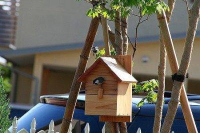 画像1: 【野鳥用巣箱】バードハウスA(前扉タイプ)巣箱(完成品 無塗装)