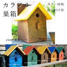 画像8: 【野鳥用巣箱:取り付け型】2色カラフルバードハウスA (前扉タイプ)(完成品) お庭でバードウォッチング! (8)